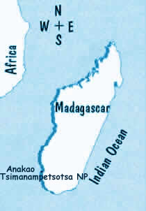 Trip to Madagascar, a customized itinerary for a trip in Madagascar, adventurous and adventure trip in Madagascar to its deep south part : Anakao and Tsimanampetsotsa National Park